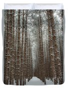Forest In Sleeping Bear Dunes In January Duvet Cover