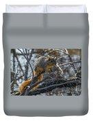 Fox Squirrel - 8988 Duvet Cover