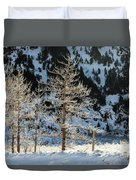 Frost Covered Trees On The Portage Glacier Highway Alaska Duvet Cover
