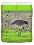 Grazing Sand Hill Crane Duvet Cover