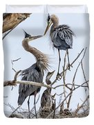Great Blue Heron Rookery 4 Duvet Cover