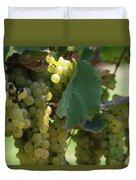 Green Grapes On The Vine 10 Duvet Cover