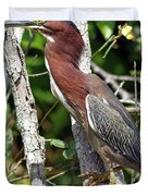 Green Heron In The Glades Duvet Cover