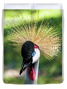 Grey Crowned Crane Gulf Shores Al Collage 2 Triptych Duvet Cover