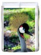 Grey Crowned Crane Gulf Shores Al Collage 6 Triptych Duvet Cover