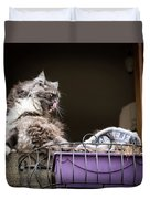 Grey Long Haired Cat Sitting On A Window Sill Duvet Cover
