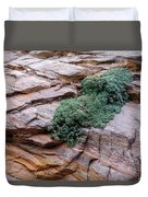 Growing From The Rock Terrain In Zion  Duvet Cover