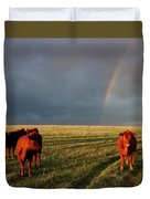 Heifers And Rainbow Duvet Cover by Rob Graham