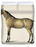 Horse  Equus Ferus Caballus  Illustrated By Charles Dessalines D' Orbigny  1806-1876  Duvet Cover
