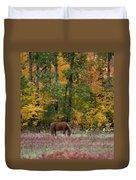 Horse In Fall Duvet Cover
