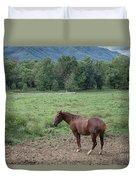 Horse Print 900 Duvet Cover