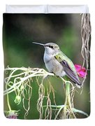 Hummingbird 105 Duvet Cover