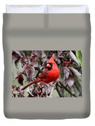 Img_0354-017 - Northern Cardinal Duvet Cover