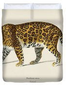 Jaguar  Panthera Onca  Illustrated By Charles Dessalines D' Orbigny  1806-1876  Duvet Cover