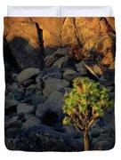 Joushua Sunset 1 Duvet Cover