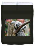 Koala Catching Zs Duvet Cover