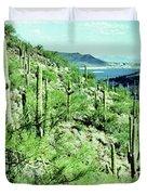 Lake Pleasant Az 045a Duvet Cover
