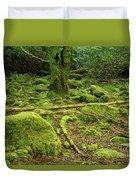 Landscape At Torc Waterfalls Duvet Cover