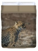 LC5 Duvet Cover by Joshua Able's Wildlife