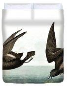 Least Stormy Petrel, Thalassidroma Pelagica By Audubon Duvet Cover