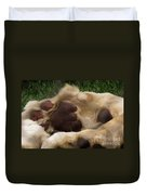 Lion's Feet Duvet Cover