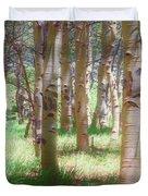 Lost In The Woods - Kenosha Pass, Colorado Duvet Cover