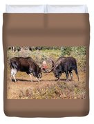 Moose Bulls Spar In The Colorado High Country Duvet Cover