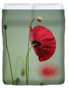 Morning Poppy Flower Duvet Cover