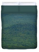Mount Greylock Reservation's Trees Duvet Cover