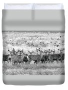 Mule Deer Black And White 01 Duvet Cover by Rob Graham