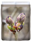 New Life In The Lilacs Duvet Cover