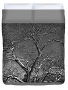 Niagara Falls Winter Textures Duvet Cover