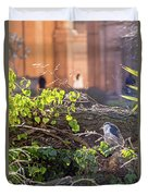 Night Heron At The Palace Duvet Cover by Kate Brown