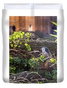 Night Heron At The Palace Revisited Duvet Cover by Kate Brown