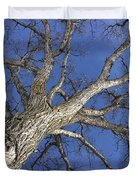 Old Oak Tree Duvet Cover