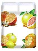 Orange Grapefruit Lemon Watercolor Fruit Illustration Duvet Cover