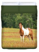 Paint Horse In Meadow Duvet Cover