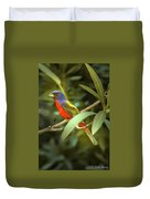 Painted Bunting Male Duvet Cover