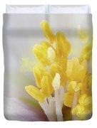 Philadelphus Flower Extreme Close Up With Pollen Duvet Cover