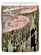 Pilings In Abstract Duvet Cover