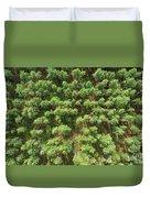 Pine Rows Aerial 2x1 Duvet Cover