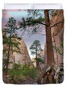 Ponderosa Pines In Slot Canyon Duvet Cover