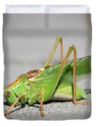 Portrait Of A Great Green Bush-cricket Sitting On The Pavement Duvet Cover