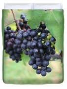 Purple Grape Bunches 20 Duvet Cover