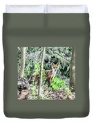 Red Fox In The Woods Duvet Cover