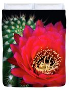 Red Hot Torch Cactus  Duvet Cover