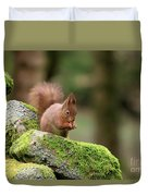 Red Squirrel Sciurus Vulgaris Eating A Seed On A Stone Wall Duvet Cover