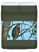 Red Shouldered Hawk Panorama Duvet Cover