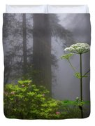 Redwoods By Crescent City 1 Duvet Cover