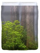 Redwoods By Crescent City 7 Duvet Cover
